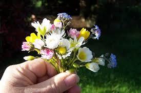 buket-poljskog-cvije%C4%87a.jpg